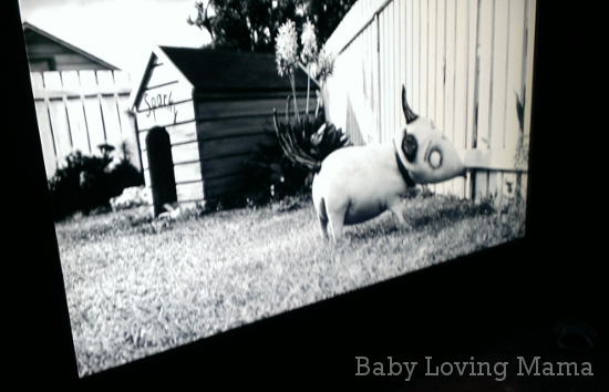 frankenweenie with ball