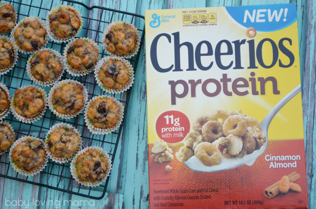 Cranberry Orange Protein Clusters with Cheerios Protein