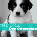 Hidden Costs of Dog Ownership
