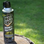 Hot Shot Wasp and Hornet Killer Spray