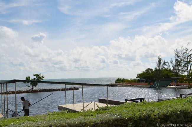 Princess Cruises Caribbean Princess Grand Cayman Excursion Dolphin Swim