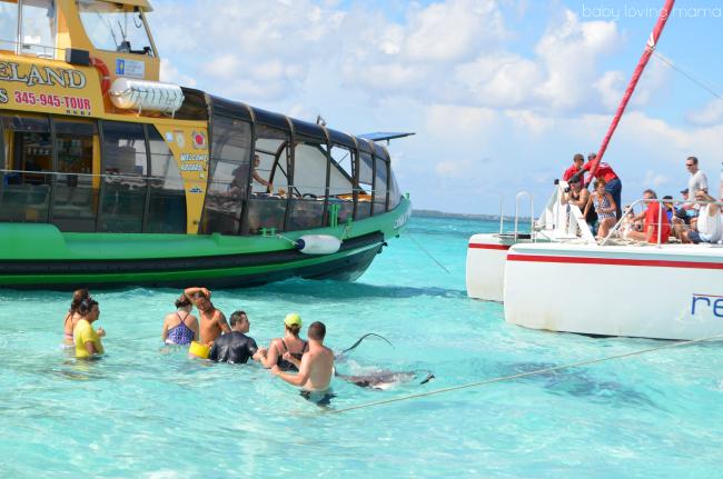 Princess Cruises Caribbean Princess Grand Cayman Excursion Stingray Experience