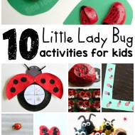 10 Little Lady Bug Activities for Kids
