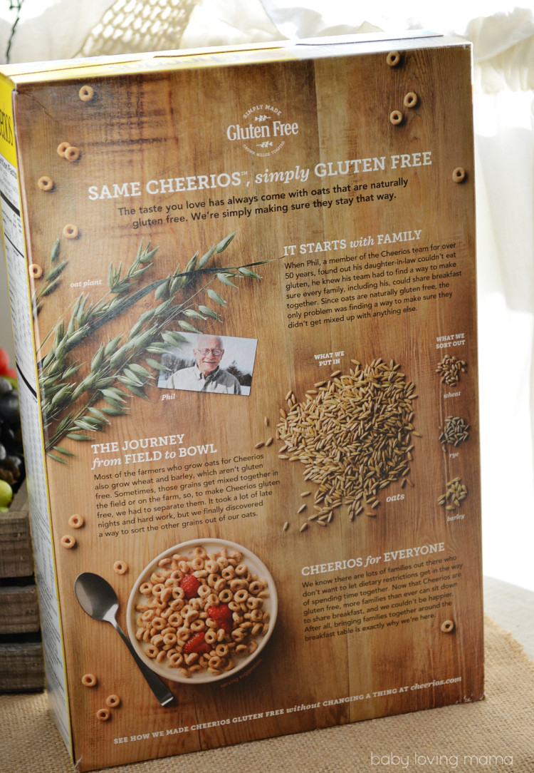 Gluten Free Cheerios Back of the Box Phil