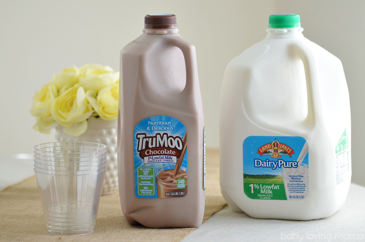 TruMoo Chocolate Milk and DairyPure Milk